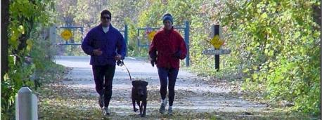 Runners Dog